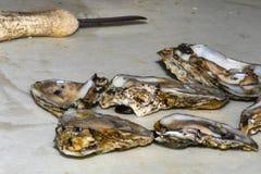 Huîtres fraîchement écossées prêtes à servir Image stock