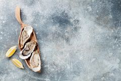 Huîtres fraîches images stock