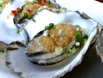 Huîtres fraîches cuites à la vapeur avec l'ail photo libre de droits