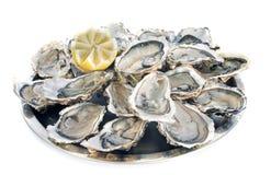 Huîtres françaises Images stock
