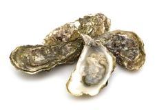 huîtres ouvertes Photos libres de droits