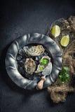 Huîtres savoureuses et froides avec la coriandre et les citrons Images libres de droits