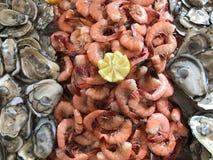 Huîtres sur demi Shell et la crevette fraîche image stock