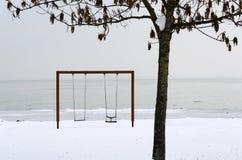 Huśta się i krajobraz Jeziorny Balaton w zima czasie Obrazy Stock