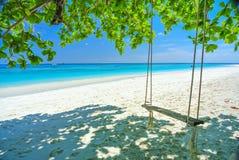 Huśtawka Na biel plaży Z Błękitnym niebieskim niebem i oceanem Obraz Stock
