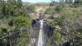 Huśtawkowy most zdjęcie royalty free
