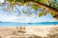 Huśtawkowy obwieszenie pod drzewem na plaży Obraz Royalty Free
