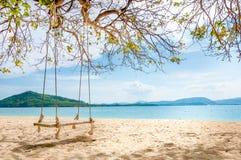 Huśtawkowy obwieszenie pod drzewem na plaży Obraz Stock