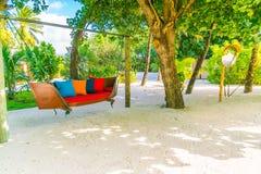 Huśtawkowy zrozumienie na drzewie w tropikalnej Maldives wyspie obrazy stock