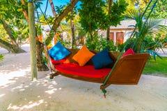 Huśtawkowy zrozumienie na drzewie w tropikalnej Maldives wyspie fotografia royalty free