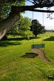 Huśtawka na drzewnym Ireland Fotografia Stock