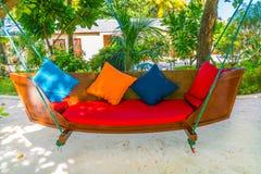 Huśtawkowy zrozumienie na drzewie w tropikalnej Maldives wyspie zdjęcie stock