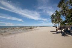 Hua Hin beach. With horse, Thailand royalty free stock photography