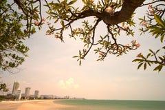 Hua Hin Beach,Thailand. Royalty Free Stock Image
