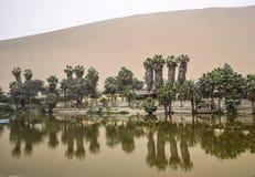 Huacachina绿洲在Ica沙漠 免版税库存图片