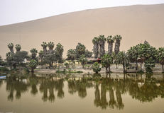 Huacachina oasis in Ica desert Royalty Free Stock Images