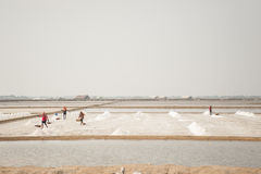 HUAHIN,泰国- 2008年5月13日:未认出的人民在盐农场运载盐在Huahin,泰国 盐产品 免版税库存图片