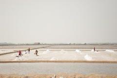 HUAHIN THAILAND - MAJ 13, 2008: Det oidentifierade folket bär salt på den salta lantgården i Huahin, Thailand Salt produktion Royaltyfria Bilder
