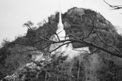 Huahin view. Branch black&white art in thailand Royalty Free Stock Images