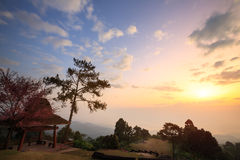 Huai Nam Dang National Park Stock Images