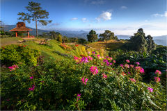 Huai Nam Dang Thailand National Park Royalty Free Stock Images