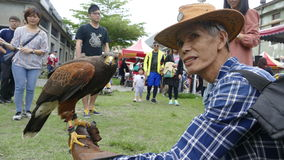 Hualien County Kultur kreativer ursprünglicher Eagle Show Lizenzfreies Stockbild