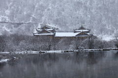 huang πολύ Στοκ εικόνες με δικαίωμα ελεύθερης χρήσης