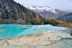 Huanglong colorful pond. Autumn of Huanglong colorful pond in China Royalty Free Stock Photos