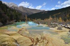 Huanglong gulnar draken är ett sceniskt och historiskt intresseområde i den nordvästliga delen av Sichuan, Kina royaltyfria bilder