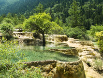 Huanglong jiuzhaigou. Huanglong or yellow dragon is a natural park close to Jiuzhaigou natural park Stock Images