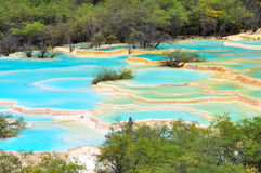 Huanglong, Sichuan. The colorful pools of Huanglong, Sichuan Royalty Free Stock Image