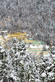 Huanglong, Sichuan, China. Winter of Huanglong, Sichuan, China Royalty Free Stock Image