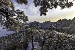 Huangshan Żółte góry Porcelanowe Fotografia Stock