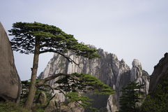 Huangshan-Begr5us$ungskiefer und himmlische Hauptspitze Lizenzfreies Stockfoto