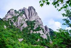 Huangshan gulnar berget, och Huangshan sörjer från det Anhui landskapet Kina royaltyfria bilder
