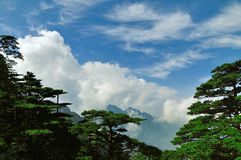 Huangshan, incredible china Royalty Free Stock Photo