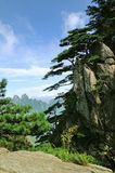 Huangshan, incredible china Royalty Free Stock Photos