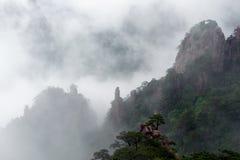 Huangshan (montagne jaune) et pin sur le dessus, Huang Shan, Chine Photographie stock