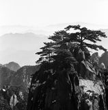 The huangshan mountain. Shoot in guangming top royalty free stock images