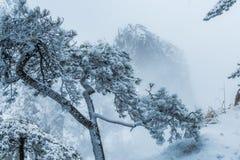 Huangshan mountain in China royalty free stock photo