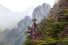 Huangshan mountain, China Stock Images