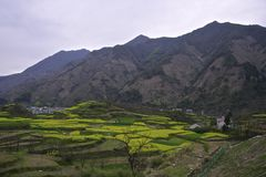 Huangshan mountain range in spring Stock Photo