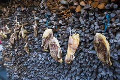 A drowned duck hanging on the wall. In huangshan mountain west, anhui province, residents have the habit of flooding New Year`s goods, with pictures of flooded royalty free stock images