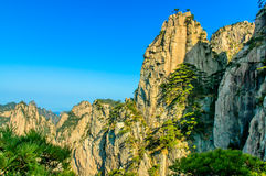 Huangshan Mountains And Trees Royalty Free Stock Photos