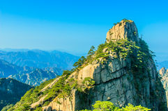 Huangshan Mountains And Trees Royalty Free Stock Photography