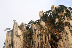 Huangshan Scenery Royalty Free Stock Photos