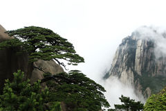 Huangshan Scenic Royalty Free Stock Photos