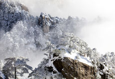 Huangshan snow Royalty Free Stock Images