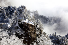 Huangshan snow Stock Images