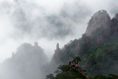 Huangshan (yellow mountain) and pine tree on the top, Huang Shan, China. Image of Huangshan (yellow mountain) and pine tree on the top(like avatar). Foggy day stock photography